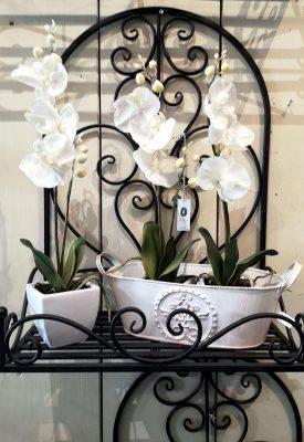 helenejaeger_Wandregal_Eisen_Orchideen